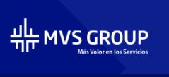 MVS Group
